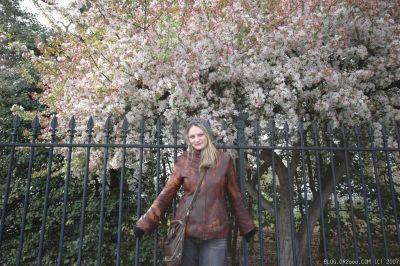 Alena & Cherry Blossom