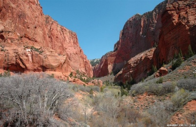 At Kolob Canyon, Zion National Park.