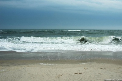 Atlantic Ocean. Beach at Fire Island.