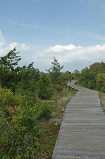 Boardwalk Through Dunes