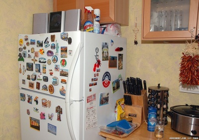 Our refrigerator and our magnet collection.