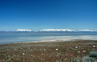 View of Wasatch mountains from Antelope Island.