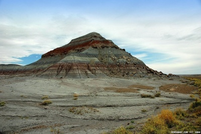 At Petrified Forest National Park.