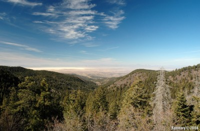 Overlooking Tularosa Basin. Lincoln National Forest.