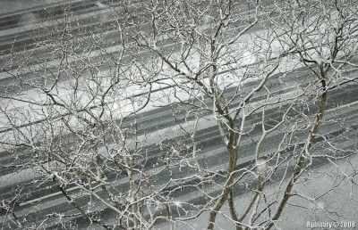 Snow sticking to the road.