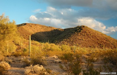 Sunset near Organ Pipe Cactus National Monument.