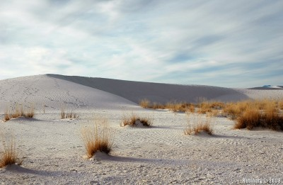 Dunes of White Sands National Monument.