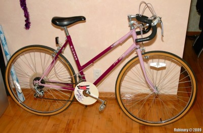 "Randor ""Dirty Dancing"" Lady's bike."