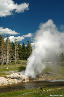 Riverside Geyser.