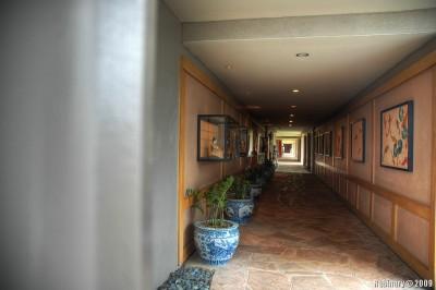 Hilton hallways.