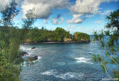 Scenic route near Hilo.