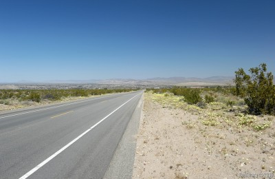 Road from Joshua Tree National Park to a town called Twentynine Palms.