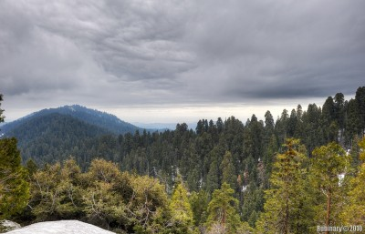 One of the overlooks on the way down to Grant Grove.