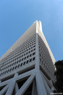 Transamerica Tower. Half a block from our hotel.