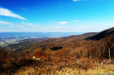 Shenandoah National Park. View from Skyline Drive.