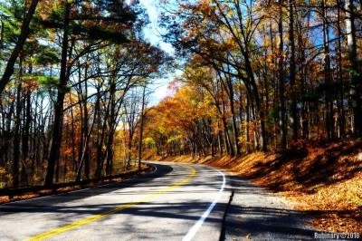 Shenandoah Autumn.