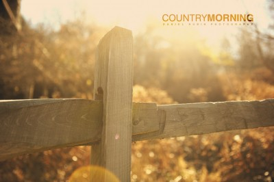 Country morning.