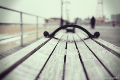 Bench on the Boardwalk.