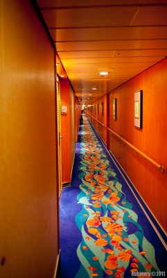 One of the hallways. Staterooms on both sides.