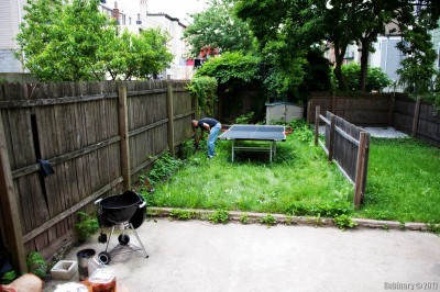 Backyard of Sasha's home in Jersey City.