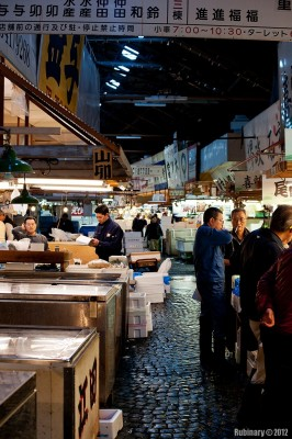 Inside the fish market.