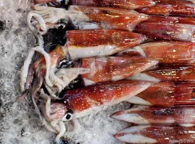 Tsukiji fish market. Yummy?