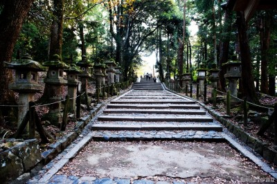 Stairs to one of Nara shrines.