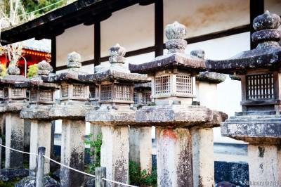 Kasuga Shrine.