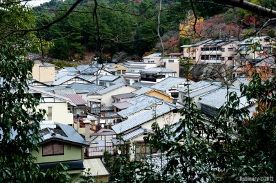 Houses on Miyajima Island.