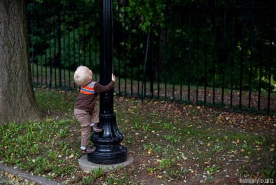 Climbing a light pole.
