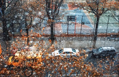 First snow out of our window.