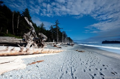 Rialto Beach. Olympic National Park.