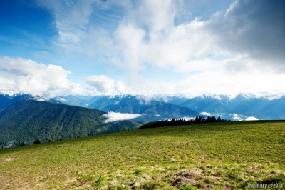 View from Hurricane Ridge.