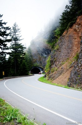 Road to Hurricane Ridge.