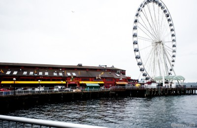 The Seattle Great Wheel.