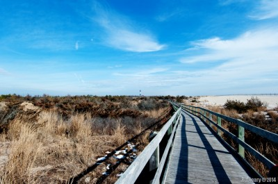 Wooden trail at Fire Island National Seashore.