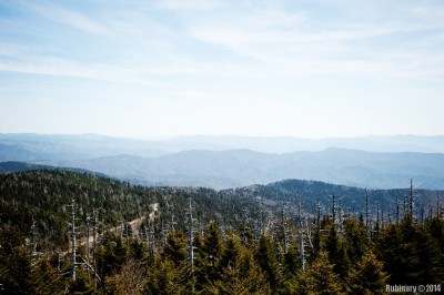 At the top of Clingmans Dome.