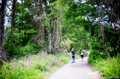 Jamaica Bay trail.