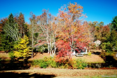 Autumn in Poconos.