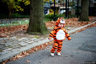 Little tiger.