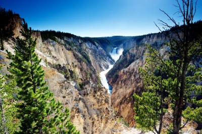 Grand Canyon of Yellowstone.