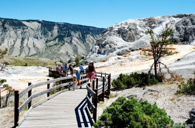 Mammoth Hot Springs trail.
