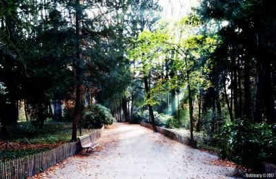 Park by Atomium.