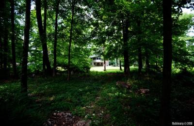 Back yard from the far edge.