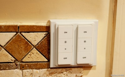 Hue Dimmer switches.