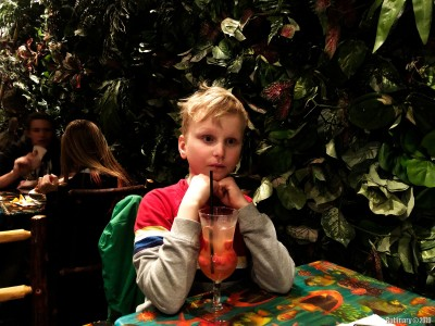 Rainforest Cafe.