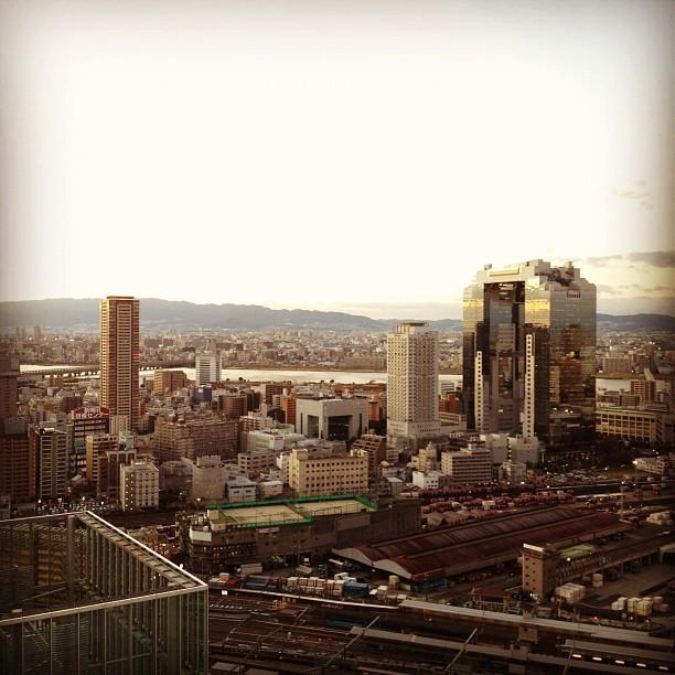 Window View (via Instagram)