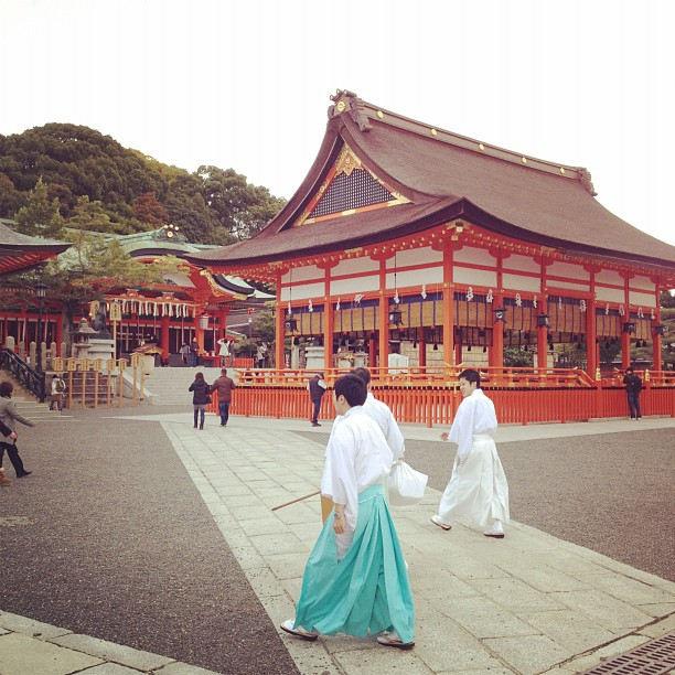 Fushimi Inari Shrine (via Instagram)