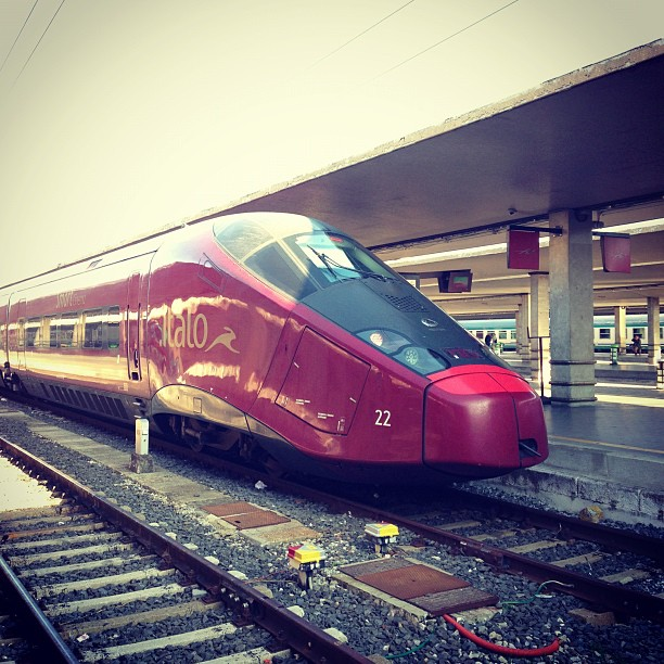 Bullet Train (via Instagram)