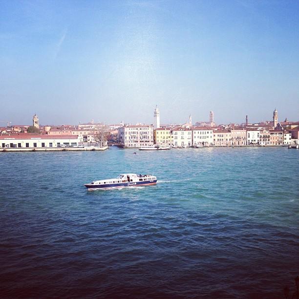 Venice Morning (via Instagram)